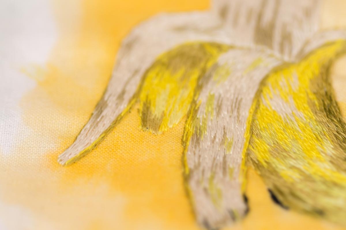 patience et petits points - des ressources pour apprendre la peinture à l'aiguille