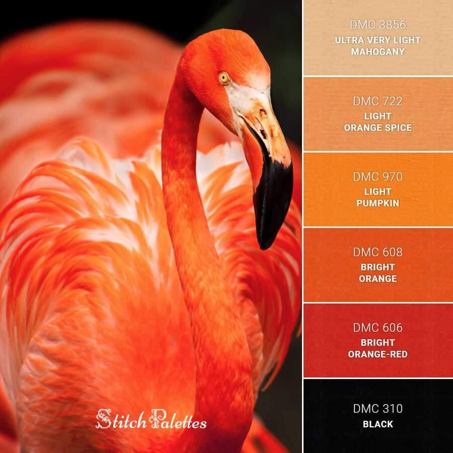 Palette de couleur issue du site Stitch Palettes